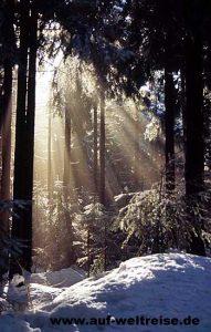 Harz Brocken Deutschland Winter