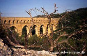 Pont du Gard, Frankreich, Brücke, Südfrankreich, Römer, Fluss, Baum, kahl