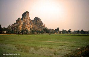 Vietnam, Reis, Reisbauer, Arbeit, Asien, Südostasien, Handwerk, grün, Mekong, Bäume, Pflanze, Halong, Bucht