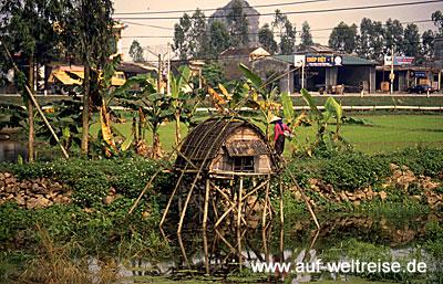 Vietnam Reis-Hütte