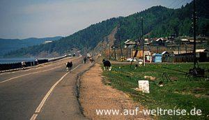 Baikal, Listwjanka, Russland, Sibirien, Straße, Bäume, Wasser