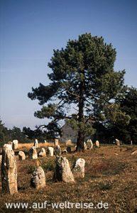 Carnac, Frankreich, Bretagne, Steine, Monolite, Steinzeichen, Steinreihen, Monolithe, Weg, blau