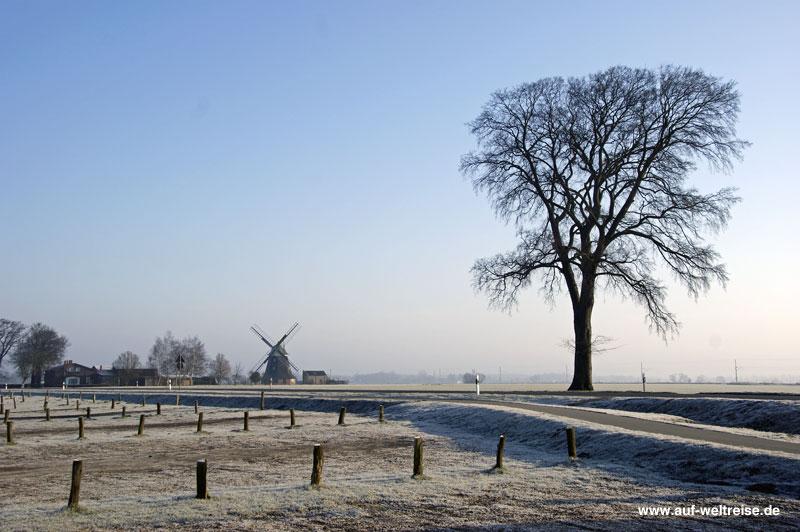 Deutschland im Winter, Deutschland, Winter, Schnee, Eis, Kälte, kalt, Raureif, morgens, Baum, Mühle, Mecklenburg, Vorpommern